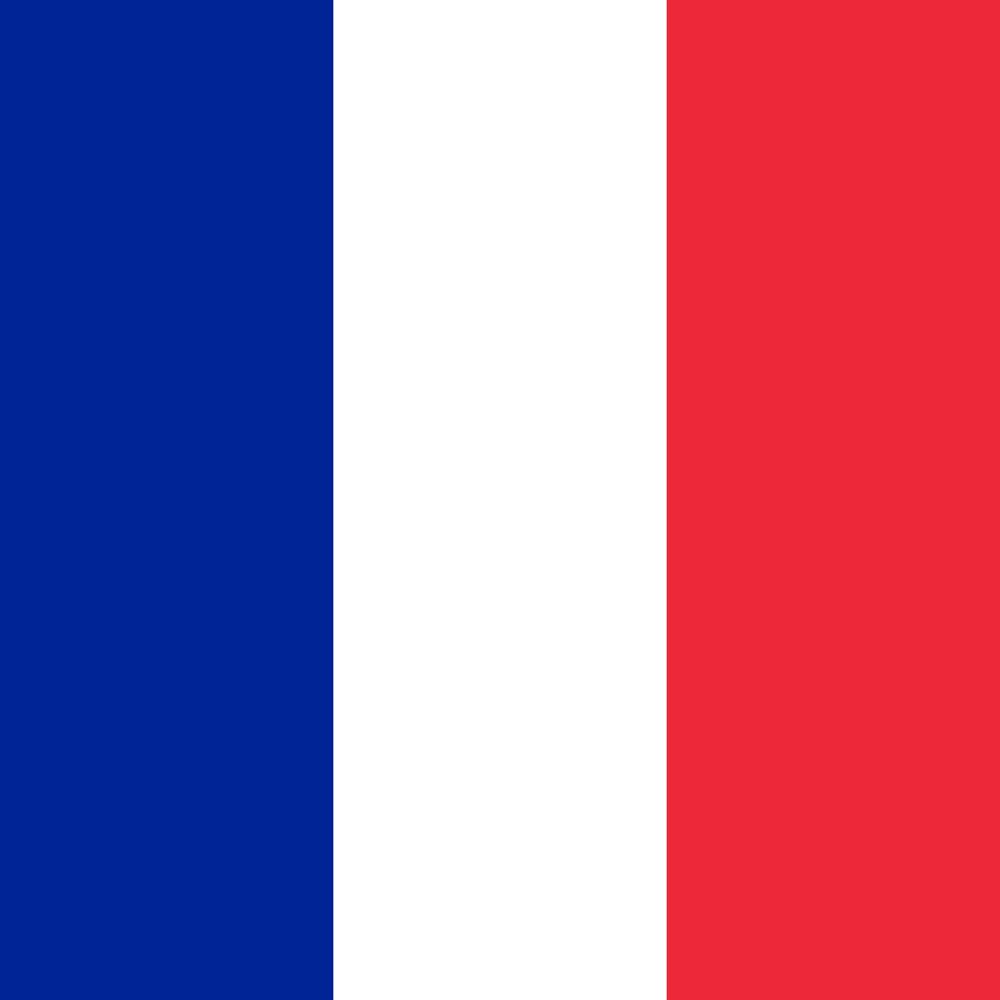 france-flag-round-medium